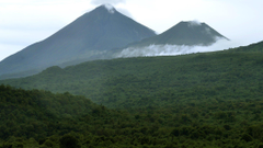 Democratic Republic of Congo signs deal to protect rainforest