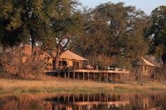 botswana good safari guide