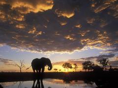Botswana in Depth