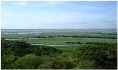 angola nature