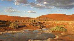 Desert Meeting Namib Coastal Southern Africa Angola Namibia South