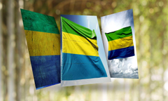 Gabon Flag Wallpapers for Android