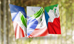 Equatorial Guinea Flag Wallpapers for Android