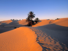 The Deserts of the World