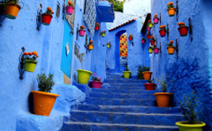 Flowerpots Outside Houses in South America Full HD Wallpapers and