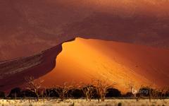 Sand dune Sossusvlei Namibia