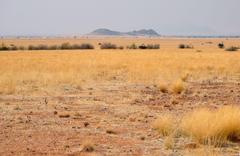 africa south africa namibia landscape desert savannah HD wallpapers