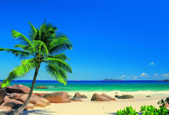 Seychelles by Murals Wallpapers Direct