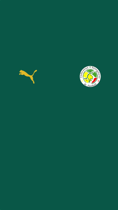 Senegal away jpg