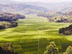 Changing Holiday Rwanda Africa Aerial view