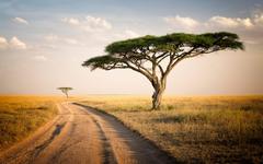 Top HDQ Tanzania Image Wallpapers