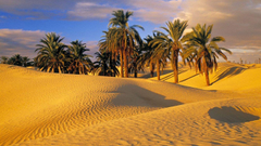 Wallpapers Tagged With Tunisian Tunisian Tunisia Desert Deserts