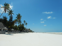 Zanzibar Beach Wallpapers New 14 Days Wilderness Safari and Zanzibar