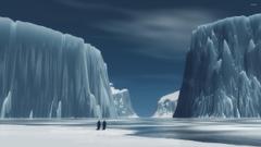 Penguins in Antarctica wallpapers