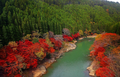 Wallpapers Arashiyama Kyoto Japan Oi River Desktop Picture