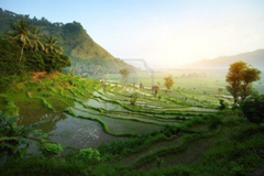 Bali Nature Wallpapers compilation HD Nature Wallpapers