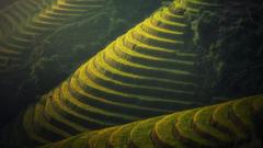 Wallpapers Farm Village Bali 4K 8K Nature