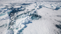 The Arctic vs Antarctic which should you visit