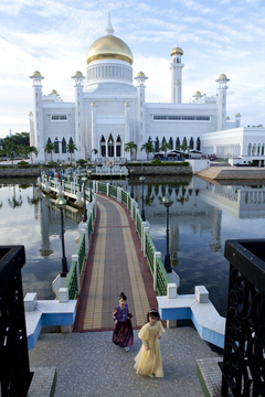 brunei palace bridge
