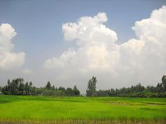 Bangladesh image Village Shanto HD wallpapers and backgrounds