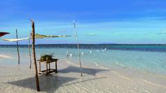 stock photo of Bohol philippines travel virginia island