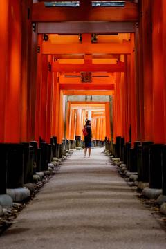 Fushimi Inari Taisha Kyoto Japan Pictures