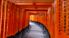 Fushimi Inari Shrine or Fushimi Inari Taisha a Shinto shrine in