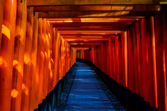fushimi inari taisha japan temple torii 4k wallpapers and backgrounds