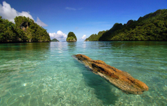 Amazing Raja Ampat Indonesia Beach Wallpapers HD Desktop Join