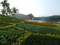 Garden in the resort of Chiang Mai Thailand wallpapers and image