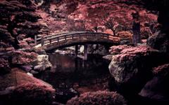 Japan Natures Wallpapers Wallpapers