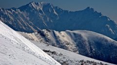 Mountain Stream Gorgious Forest Valley Mountains Kyrgyzstan
