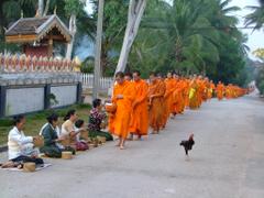 day Luang Prabang beauties