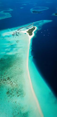 Maldives como cocoa photo by Shifaaz shamoon