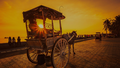 Horse Cart In The Sunset