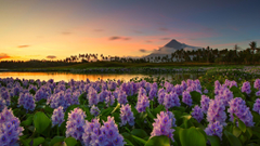 Mayon Volcano at distance Philippines wallpapers