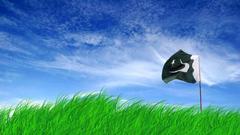 Pakistani Flag HD Wallpapers For Desktop