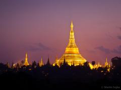 Golden Shwedagon Pagoda in Yangon at Dawn Myanmar