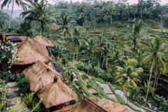 Ubud Hd Backgrounds