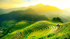 Ubud Bali Indonesia Wallpapers Online News Travel