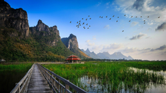 Wetlands in Thailand wallpapers and image