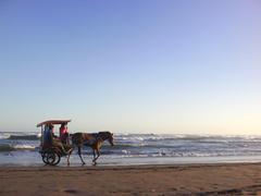 Beaches Andong Tools Transportation Yogyakarta Tour Beach Indonesia