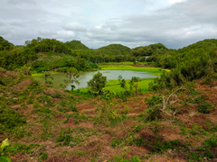 Photo Indonesia Yogyakarta Nature Lake Forests Tropics