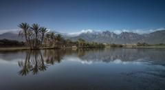 Socotra Island Yemen Mountain Palm Island Fog Landmark Landscape