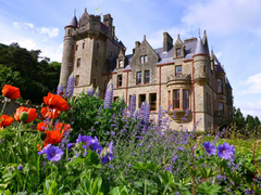 Medieval Belfast Castle Ireland Flowers Backgrounds Pictures for