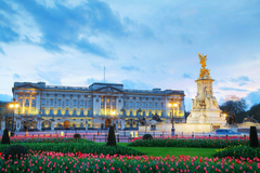 Wallpapers London Palace England Monuments Buckingham palace Tulips