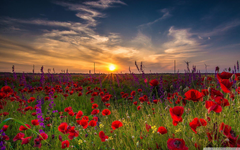 Early morning in Bulgaria HD desktop wallpapers High Definition
