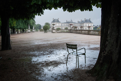 luxembourg terrace tree chair a pool after the rain HD wallpapers
