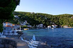 Wallpapers Montenegro Spa town Herceg Novi Rose Cities