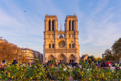 Things You Shouldn t Miss while Visiting the Notre Dame
